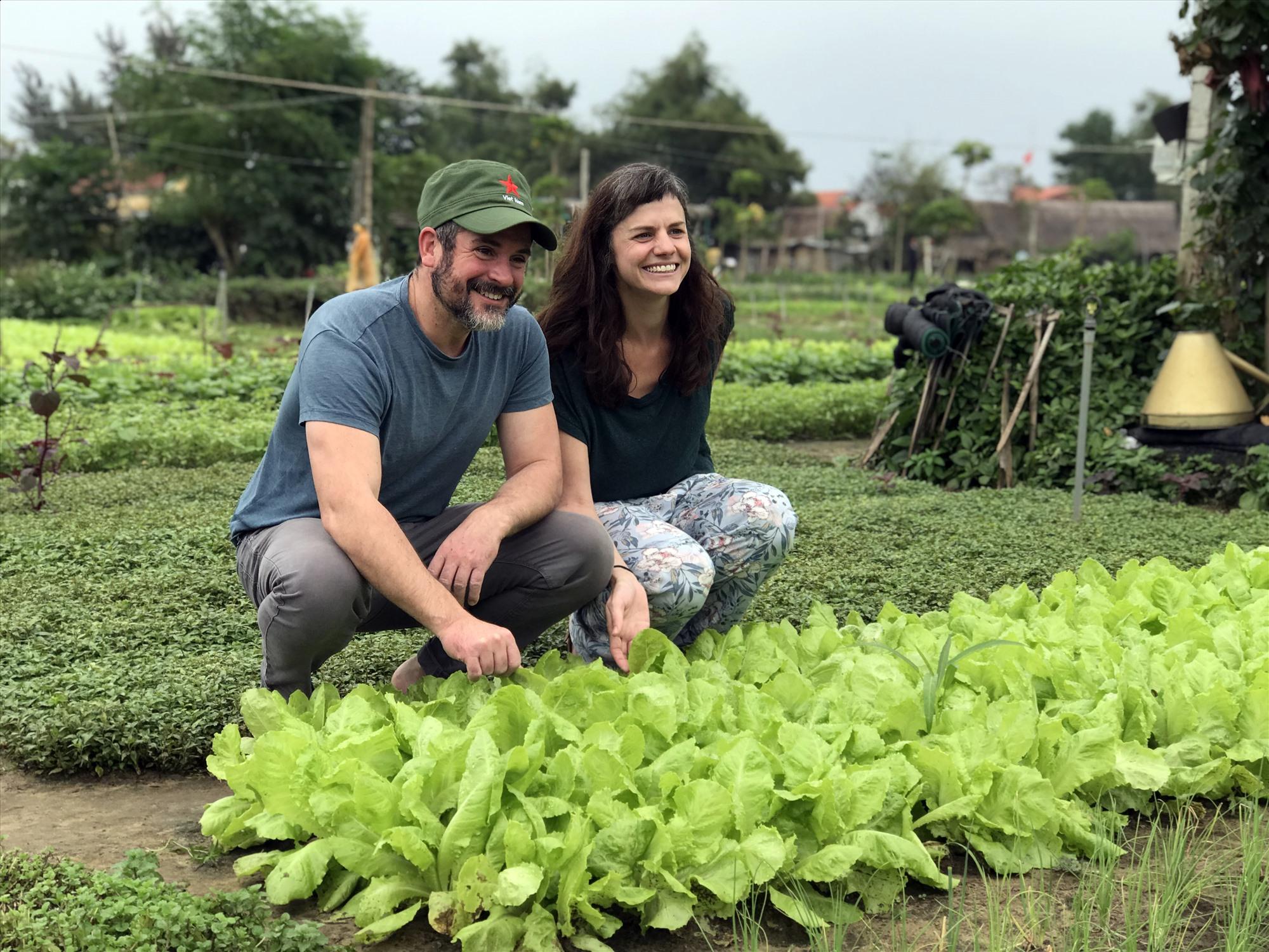 Quảng Nam: Chọn lọc không gian cho du lịch nông nghiệp