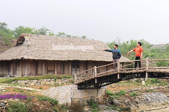 Trang trại Amifarm Mộc Châu - điểm du lịch trải nghiệm