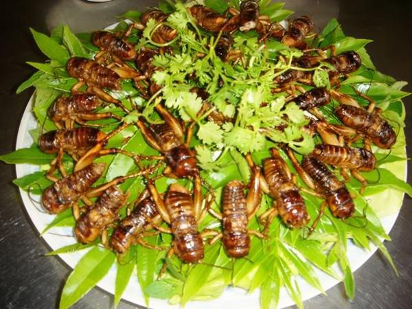 Nhà hàng - Quán ăn ở Đồng Nai