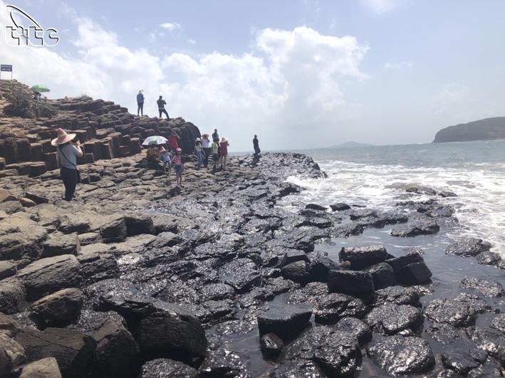 Gành Đá Đĩa - sự kết hợp hoàn hảo giữa địa chất và không gian biển lý tưởng
