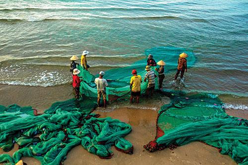 Độc đáo nghề kéo lưới rùng ở Mũi Né, Bình Thuận