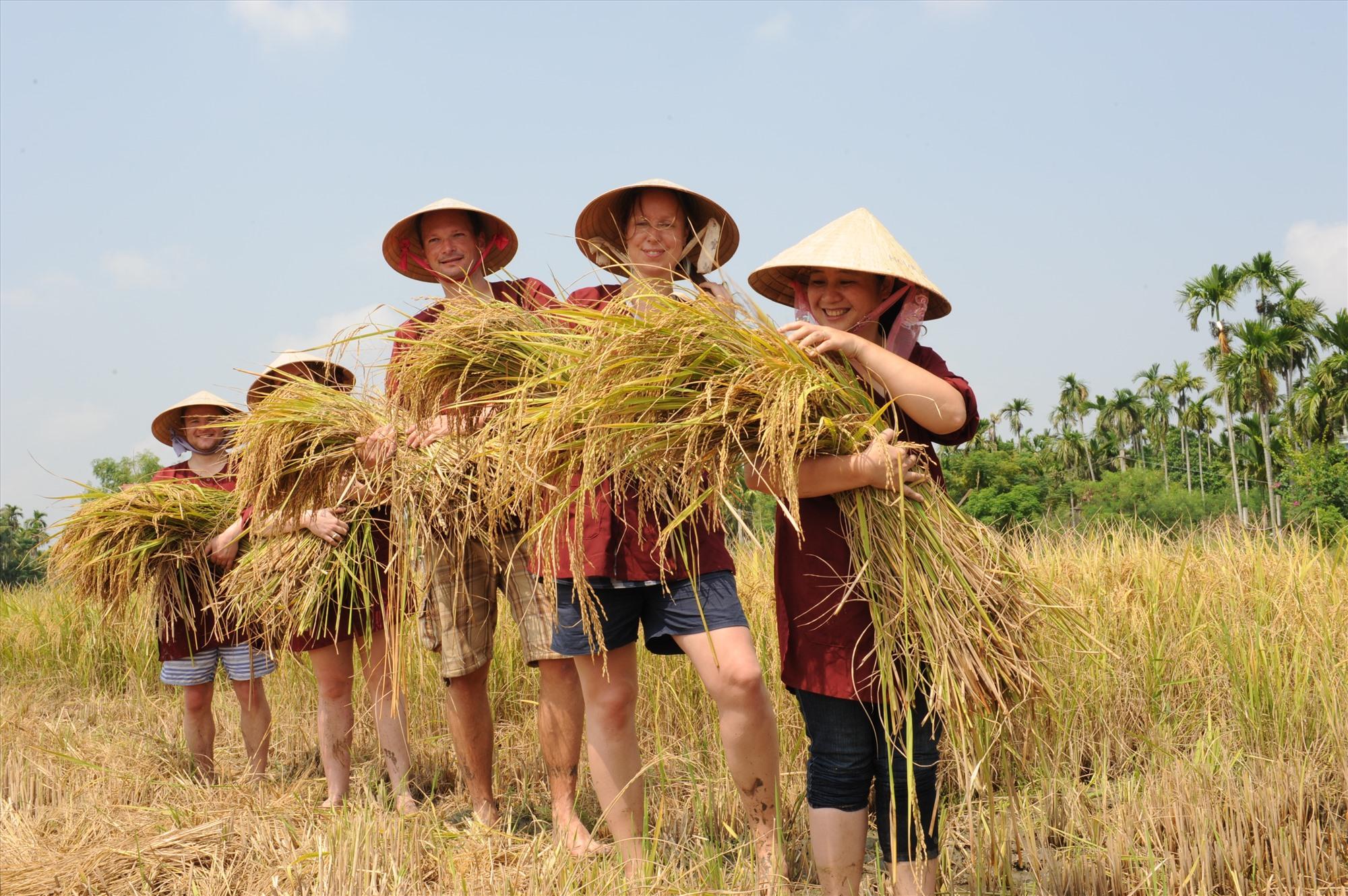 Quảng Nam: Phục hồi du lịch sau dịch Covid-19