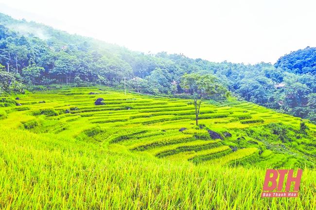 Du lịch sinh thái ở Thanh Hóa: Tiếng gọi từ thiên nhiên hoang dã