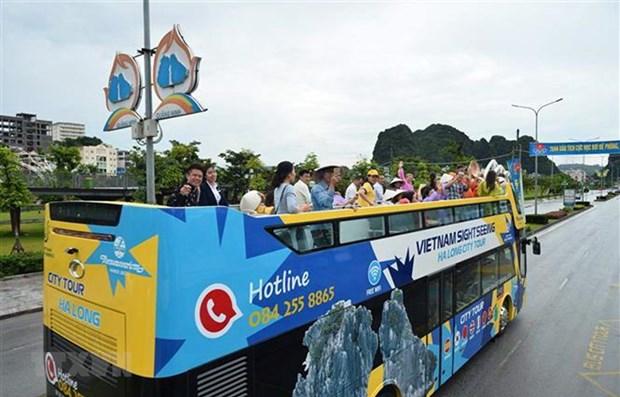 Bình Thuận và Bà Rịa-Vũng Tàu: Thí điểm vận chuyển khách du lịch bằng xe ôtô hai tầng thoáng nóc