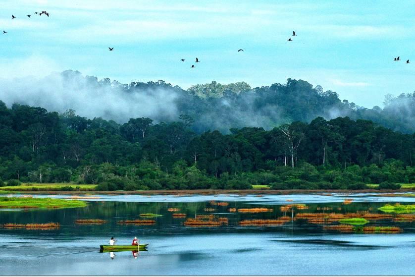 Lý thú Vườn quốc gia Nam Cát Tiên
