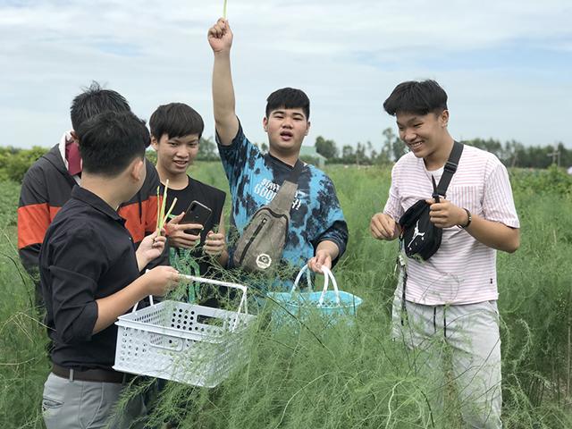 Đến Tháp Mười, tham quan mô hình nông nghiệp sinh thái kết hợp du lịch trải nghiệm