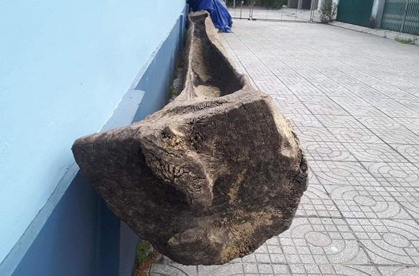Hà Tĩnh: Phát hiện 2 thuyền độc mộc cổ dưới lòng sông Ngàn Sâu