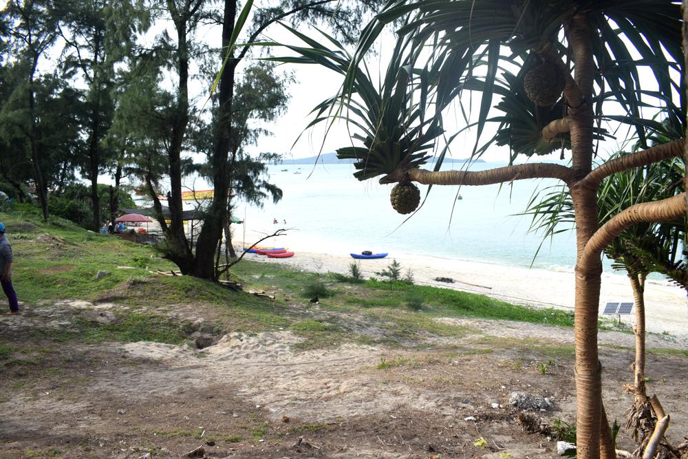 Mùa hè ở bãi biển Hồng Hải, Cô Tô