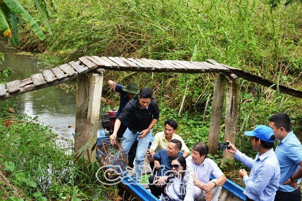 Du lịch Cà Mau chuyển hướng vào du khách nội địa