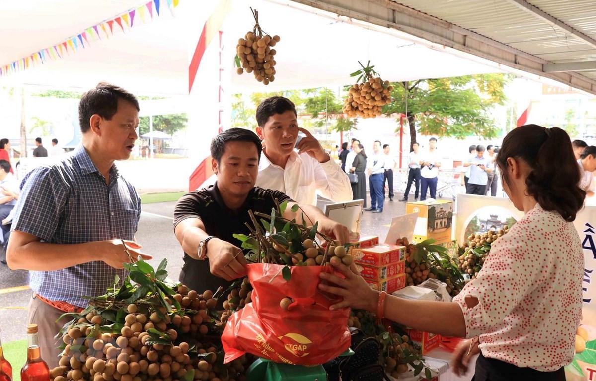 Hưng Yên: 50 gian hàng được trưng bày tại Lễ hội nhãn lồng năm 2020