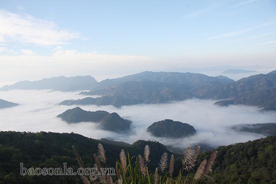 Biển mây trên đỉnh Co Mạ, Sơn La