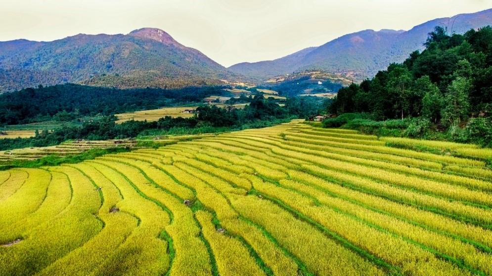 """Tin địa phương """"Hội mùa vàng Bình Liêu"""" - Sản phẩm du lịch mới và đặc trưng của Quảng Ninh"""