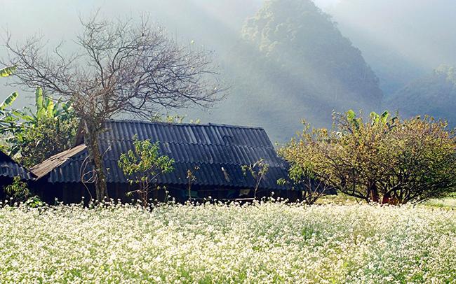 Khai thác tiềm năng du lịch ở Vân Hồ, Sơn La