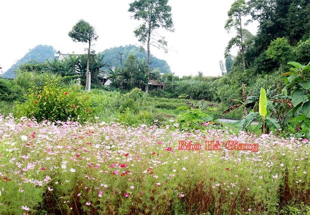 Hà Giang: Quản Bạ tích cực chuẩn bị cho Lễ hội