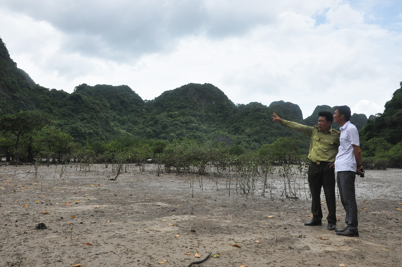 Bảo tồn, phát huy giá trị Vườn quốc gia Bái Tử Long