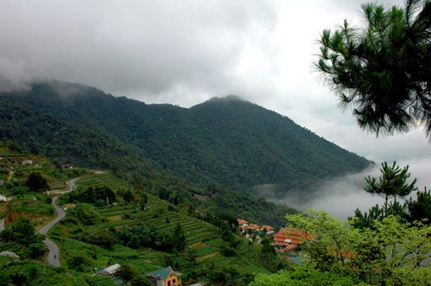 Ghé thăm Vườn quốc gia Tam Đảo (Vĩnh Phúc) – khu đa dạng sinh học cao