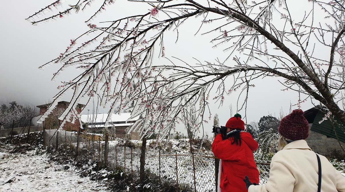 Du khách nườm nượp lên Y Tý, Sa Pa ngắm tuyết rơi