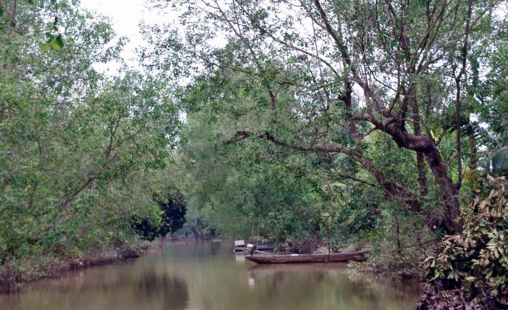 Bồng bềnh sóng nước sông Hậu khám phá miệt vườn cù lao Mây (Vĩnh Long)