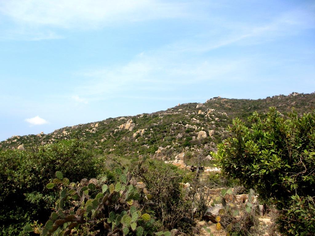Ninh Thuận: Khám phá Vườn Quốc gia Núi Chúa