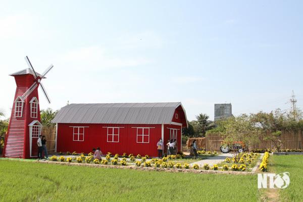 Trang trại Tháp Chàm- điểm đến du lịch hấp dẫn