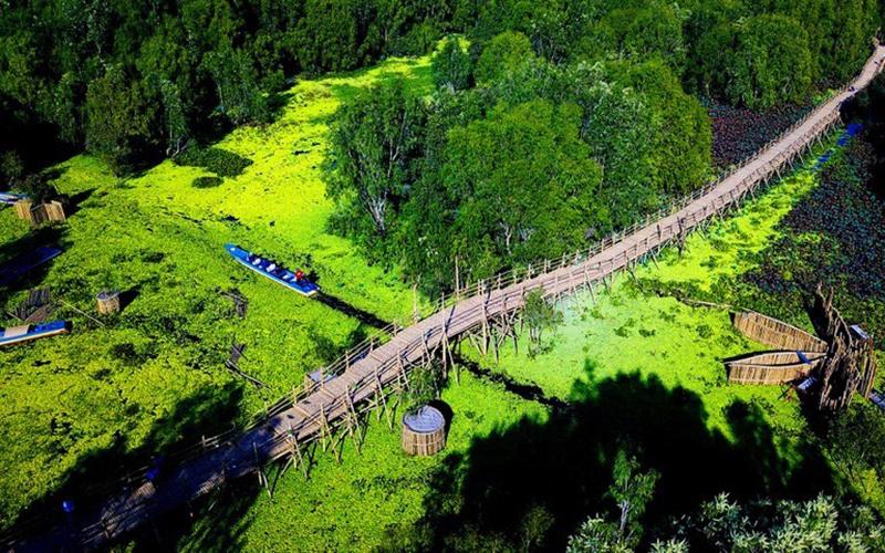 Khách du xuân rừng tràm Trà Sư, check-in cầu tre dài nhất Việt Nam