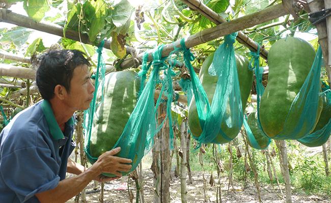 Du lịch làng nghề: Góp phần bảo tồn nghề truyền thống ở Bình Định