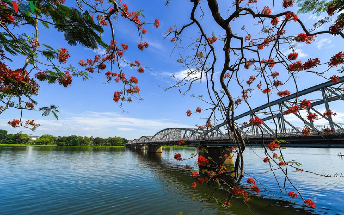 Bình Thuận: Khảo sát, học tập kinh nghiệm về City tour