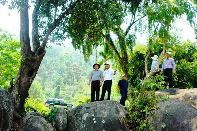 Bình Định: Khảo sát xây dựng sản phẩm du lịch huyện An Lão
