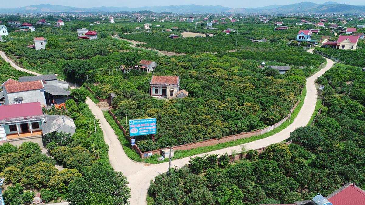 Công ty lữ hành tại Bắc Giang