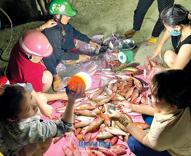 Khám phá chợ cá đêm ở Lý Sơn (Quảng Ngãi)