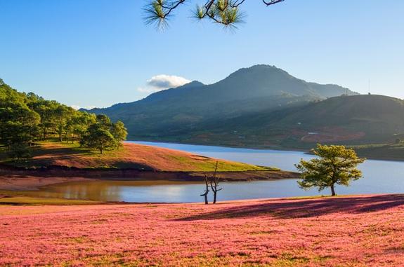 Lâm Đồng lập quy hoạch Khu du lịch quốc gia Đan Kia - Suối Vàng