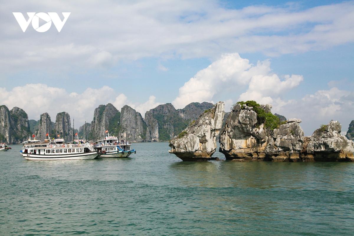 Quảng Ninh tạm dừng hoạt động tham quan, du lịch để phòng chống dịch bệnh