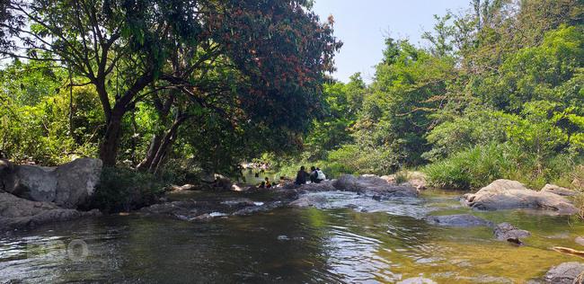 Mát lành suối Nước Gộp (Bình Định)