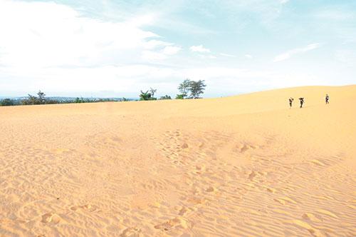 """Phiêu lưu cùng """"đồi cát bay"""" Mũi Né, Bình Thuận"""