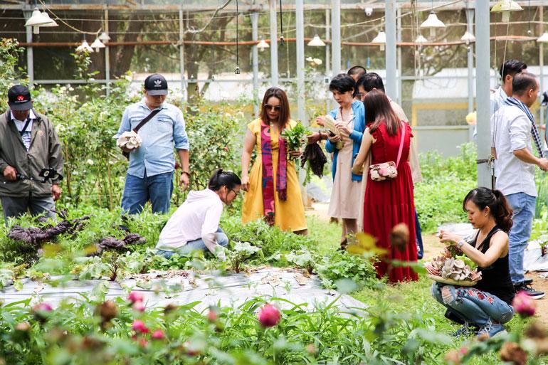 Lâm Đồng: Gỡ nút thắt cho Du lịch canh nông
