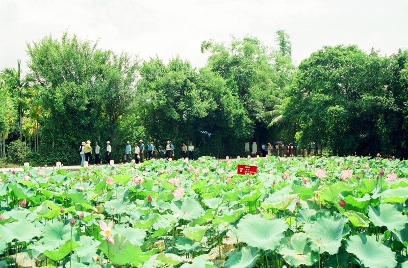 Công ty lữ hành tại Nghệ An