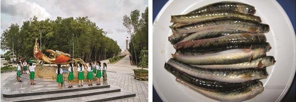 Về Cà Mau ăn cháo cá kèo