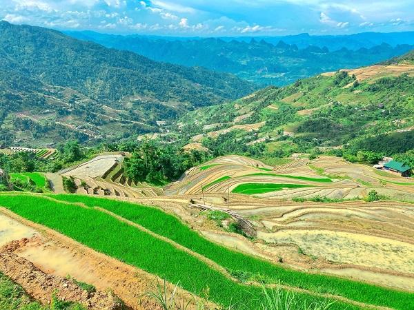Hà Giang: Ruộng bậc thang Phương Tiến mùa nước đổ