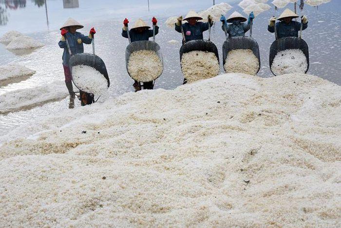 Khánh Hòa: Sẽ gắn kết hoạt động du lịch biển với du lịch trải nghiệm sản xuất và chế biến muối