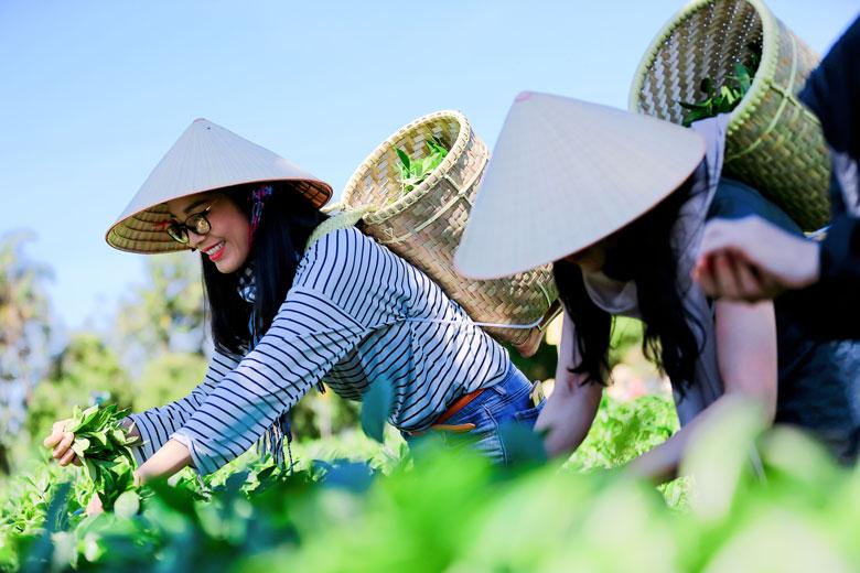 Du lịch nông thôn sẽ là chủ lực phục hồi du lịch Việt Nam: Sản phẩm của du lịch nông thôn