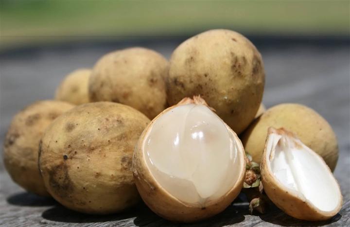 Món gỏi độc nhất của xứ Quảng làm say mê bao thực khách, bạn nếm thử chưa?