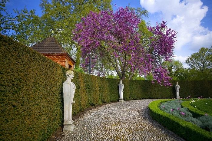 Lạc lối vào những khu vườn bách thảo đẹp nhất trên thế giới