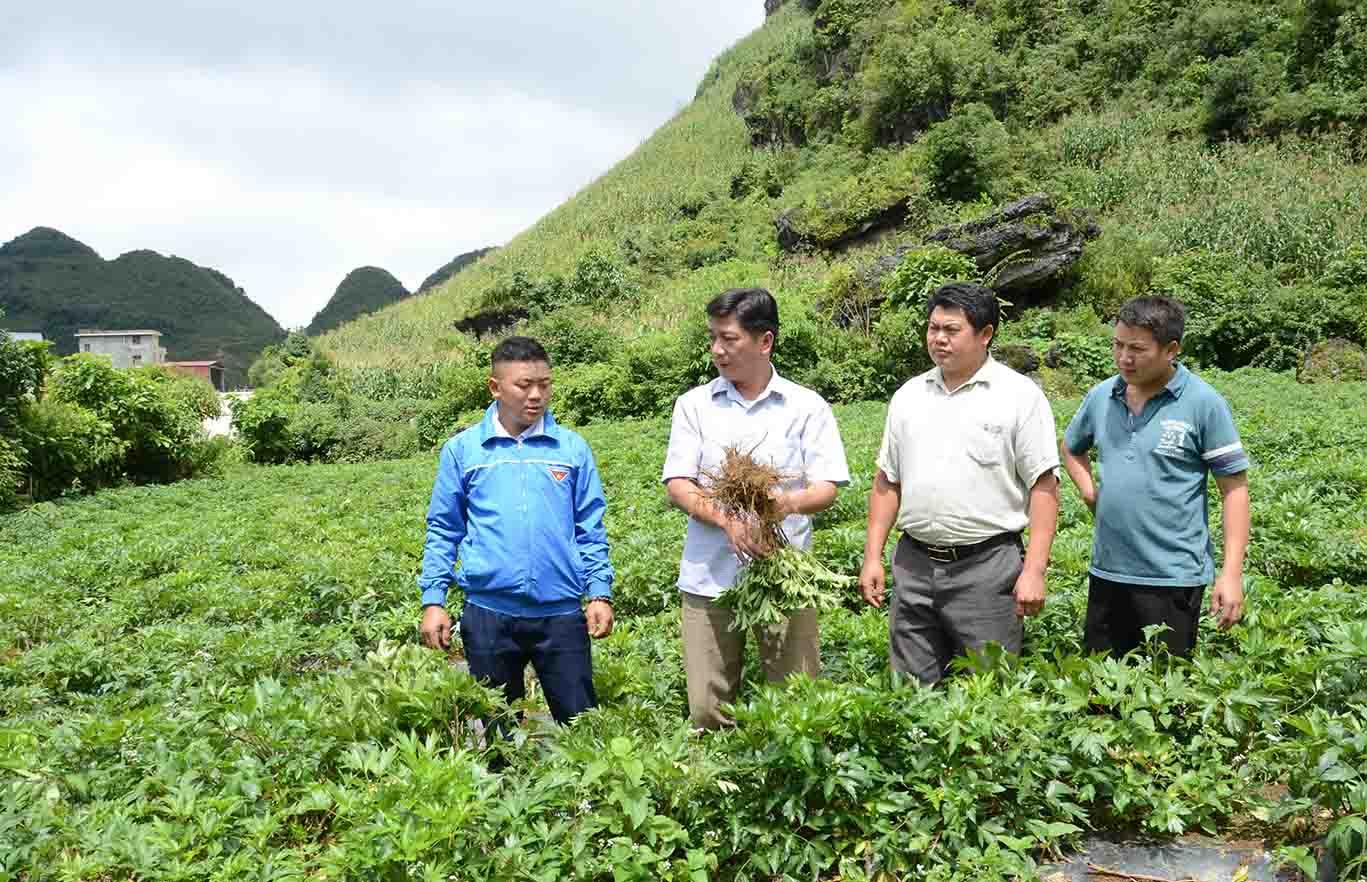 Lai Châu: Tiềm năng du lịch nông nghiệp, nông thôn