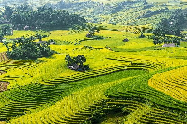 Du lịch Lào Cai phấn đấu đến năm 2030 là ngành kinh tế mũi nhọn đột phá