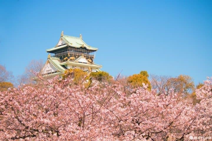 Sức hấp dẫn của thị trường du lịch Nhật Bản sau dịch Covid-19