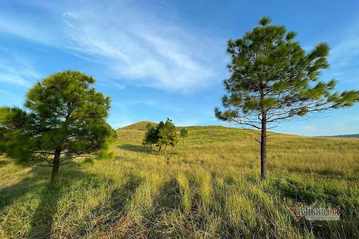 Mê mẩn vùng thảo nguyên hoang sơ được ví như ''Đà Lạt ở Quảng Ninh''
