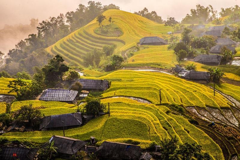 Hà Giang: Ruộng bậc thang Hoàng Su Phì - Di sản văn hóa quốc gia