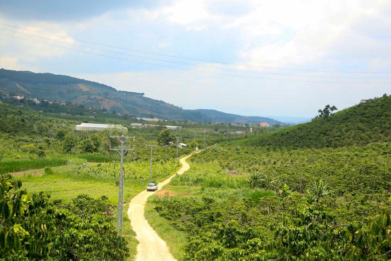 Lâm Đồng: Nhiều điểm đến đẹp, mới ở Lâm Hà