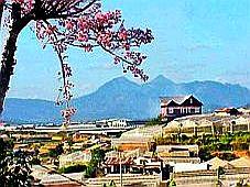 Lâm Đồng: Định hướng để phát triển Văn hoá, Thể thao và Du lịch