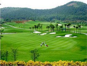 Sân golf quốc tế Đồng Mô - nơi giải trí lý tưởng cho khách du lịch